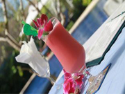 Frangipani-Villa-Hotel-Pool-Bar